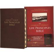 NASB LP BIBLE (LARGE PRINT; THUMB INDEXED) - BURGUNDY BONDED LEATHER LLPNASBRI