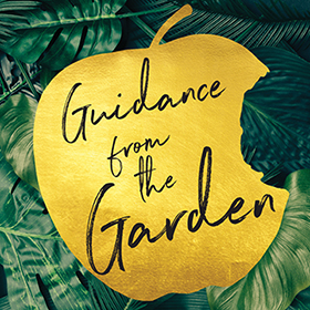Guidance From the Garden (4-CD set) GGCD